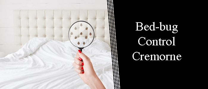 Bed Bug Control Cremorne